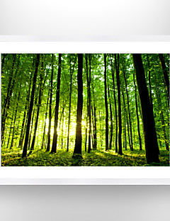 Framed Art Print Famous Landscape Still Life Wall Art, PS Material With  Frame Home Decoration Frame Art Living Room Bedroom Bathroom