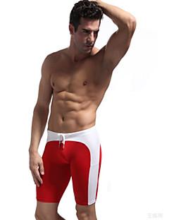 ספורטיבי לגברים בגדי ים מגביל חיידקים Bottoms בגדי ים פוש אפ מיתרים ירוק / אדום / שחור / כחול ירוק / אדום / שחור / כחול S / M / L / XL