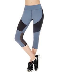 billiga Träning-, jogging- och yogakläder-Dam Nät / Lappverk Korta byxor för jogging - Svart, Blå sporter Cykling Tights / Leggings Sportkläder Torkar snabbt