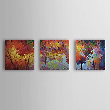 Maalattu Kukkakuvio/Kasvitiede Kangas Hang-Painted öljymaalaus Kodinsisustus 3 paneeli