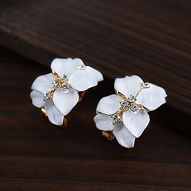 Women's Fashion Lovely Earrings