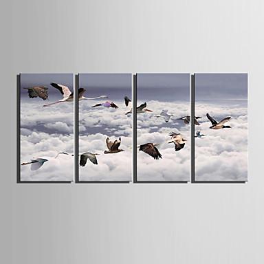 e-home® feszített vászon art madár dekoráció festés sor 4