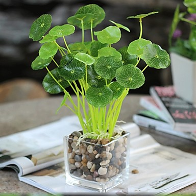 Branch Silk Plastic Plants Tabletop Flower Artificial Flowers