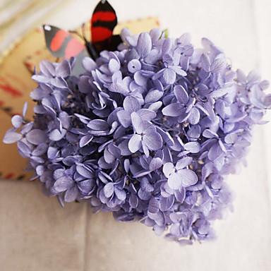 LavendelHydrangea erhaltene frische Blumen