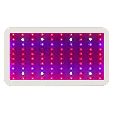 LED-vækstlampe 10000 lm Naturlig hvid / Rød / Blå / UV Højeffekts-LED AC 85-265 V 1 stk