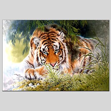 هانغ رسمت النفط الطلاء رسمت باليد - حيوانات كلاسيكي / الحديث تشمل الإطار الداخلي / امتدت قماش
