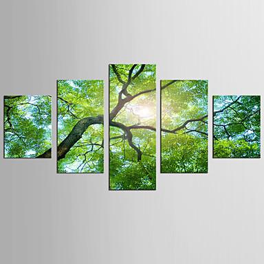 風景 花柄/植物の 近代の 田園,5枚 キャンバス 任意の形状 プリント 壁の装飾 For ホームデコレーション