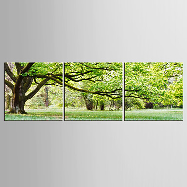 キャンバスセット 風景 花柄/植物の Modern 田園,3枚 キャンバス 縦長 版画 壁の装飾 For ホームデコレーション