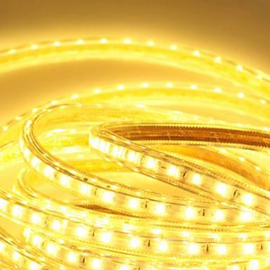 6m 360 LED 5050 SMD 温白色 / ホワイト / ブルー 防水 220 V / # / IP65