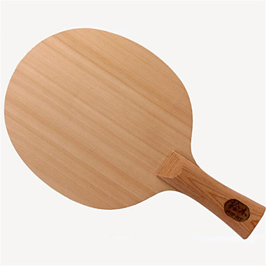 DHS® DI-HT FL Ping Pang/מחבטי טניס שולחן לביש עמיד עץ סיבי פחמן 1