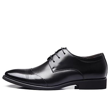 Homens Sapatos Confortáveis Microfibra Primavera & Outono Oxfords Preto / Marron