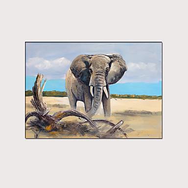Painettu Pingoitetut kanvasprintit - Eläimet Moderni Art Prints
