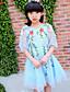 levne Dívčí šaty-Dívka je Bavlna Polyester Jedna barva Květiny Krajka Léto Šaty