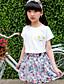 preiswerte Kleidersets für Mädchen-Mädchen Sets Blumen Baumwolle Sommer Kleidungs Set