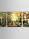 pictate manual peisaj pictură în ulei cu rama întinsă - set de 3