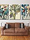 personifierade kanfastryck sträckta canvas konst abstrakt blomma 28x40cm 40x60cm sträckt konst uppsättning av 3
