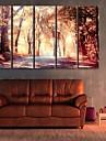 e-home® întins panza ești căderea de mangrove decorativ set pictura de 5