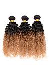 Indiskt hår Curly Weave Kinky Curly Hårförlängning av äkta hår 3 delar Nyans