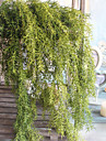 Flori artificiale 1 ramură Stil modern Plante Flori Perete