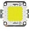 100W 10000lm 6000K condus cip alb rece rece bec alb de mare putere de economisire a energiei lampă de cip (dc 30-33v)