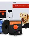 Katt Hund Träning Vattentät Laddningsbart Elektrisk Lätt att använda