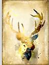 Hang målad oljemålning HANDMÅLAD - Djur Klassisk Moderna Duk