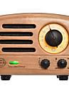 MAO KING MW-2 FM Radio portabil Radio FM / Difuzor Încorporat Receptorul mondial Maro Deschis