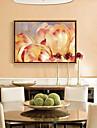 Botanic Ilustrație Wall Art,Aliaj de Aluminiu Material cu Frame For Pagina de decorare cadru Art Dormitor
