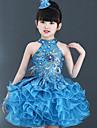 رقص الباليه الفساتين أداء بوليستر نموذج / طباعة / متدرجة / كريستال / أحجار الراين بدون كم ارتفاع عال فستان