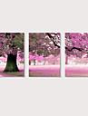 الطباعة مطبوعات قماش رغم الضغوط - مناظر طبيعية فوتوغرافي الحديث ثلاث لوحات المطبوعات الفنية